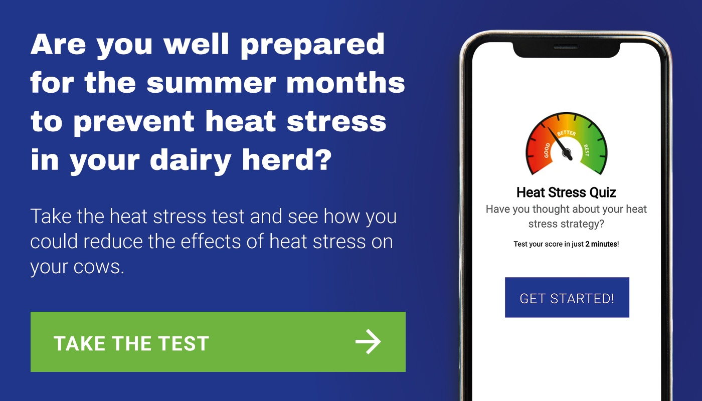 heat stress test