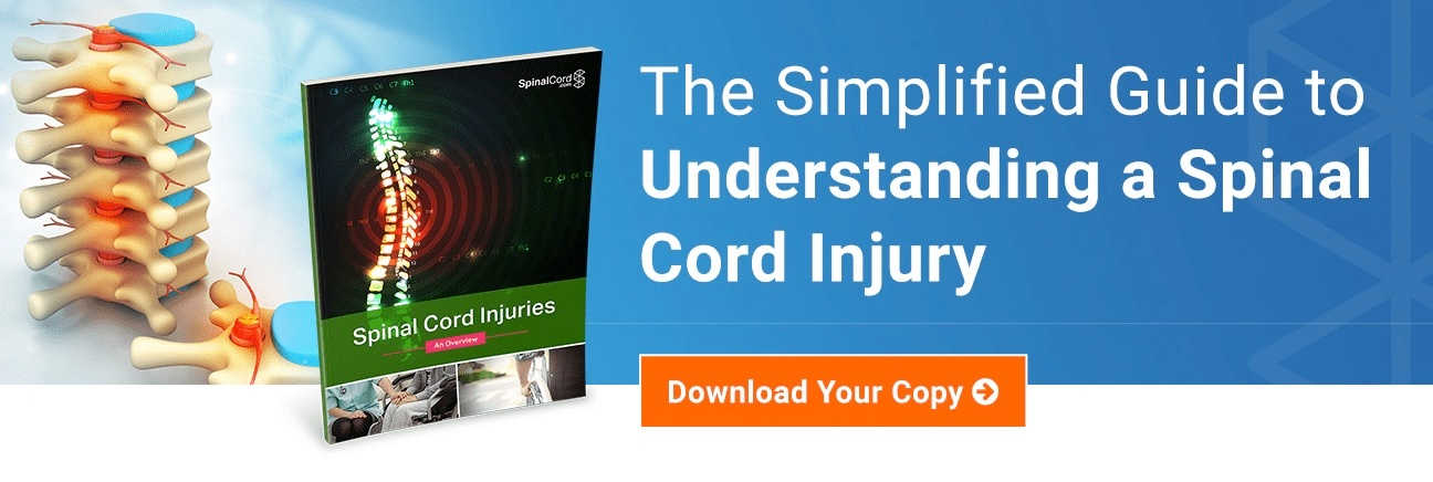 understanding-spinal-cord-injury-guide