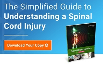The simplified guide to understanding a spinal cord injury