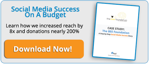 Social Media Success on A Budget