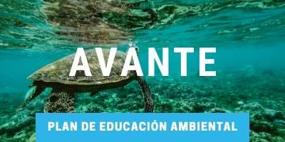 Plan de educación ambiental Cancun Sailing
