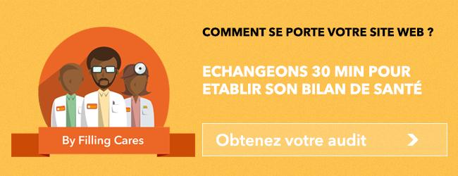 ECHANGEONS 30 MIN POUR ETABLIR LE BILAN DE SANTE DE VOTRE SITE WEB