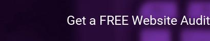 Get a FREE Website Audit