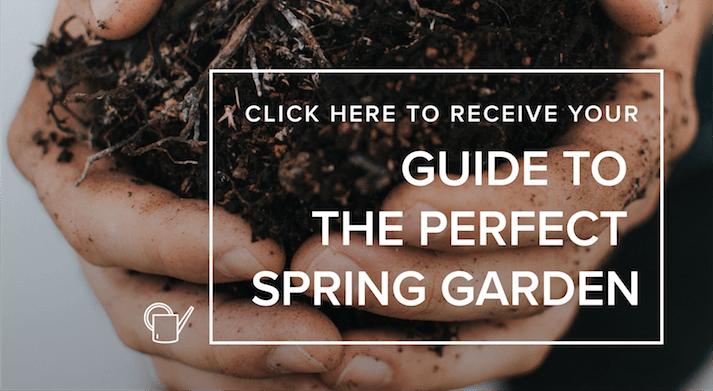 garden-plan-guide