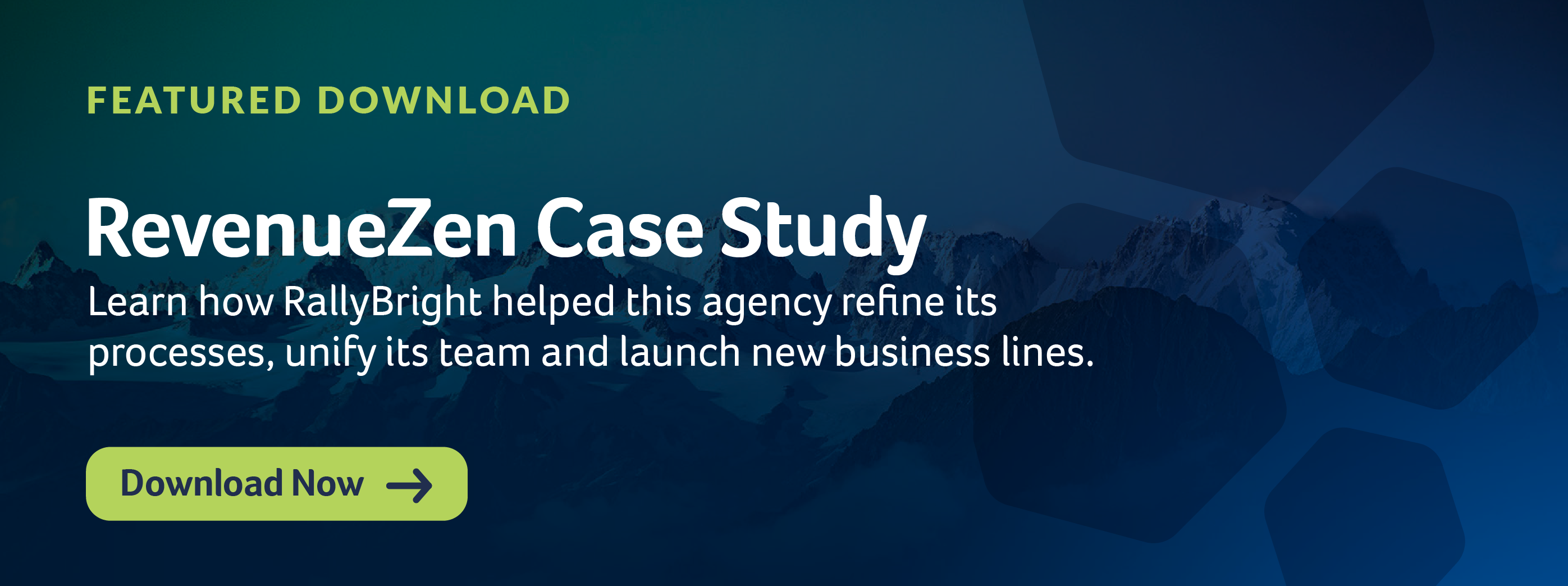 RevenueZen Case Study Download