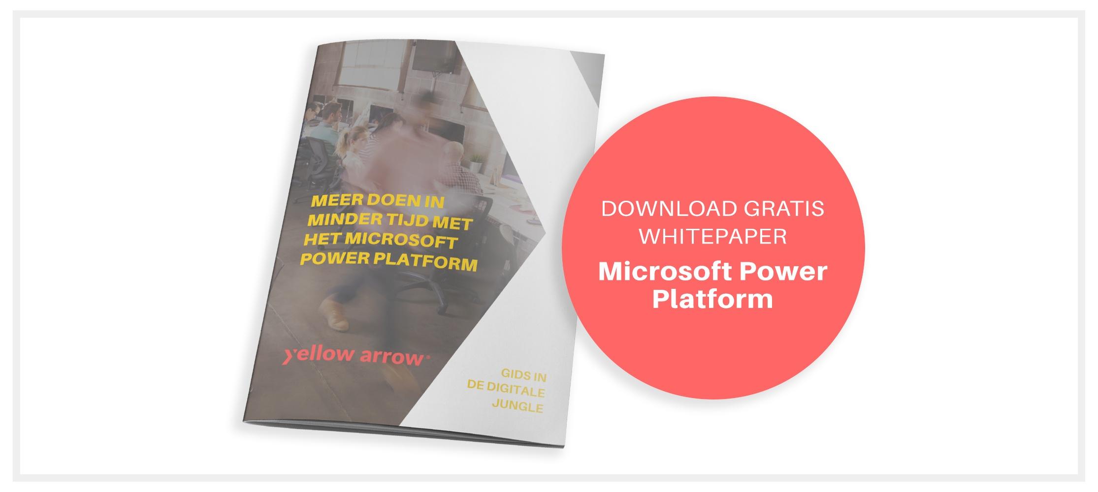 Voorbeeld van whitepaper Meer doen in minder tijd met het Microsoft Power Platform