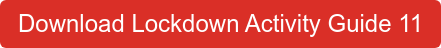 Download Lockdown Activity Guide 11
