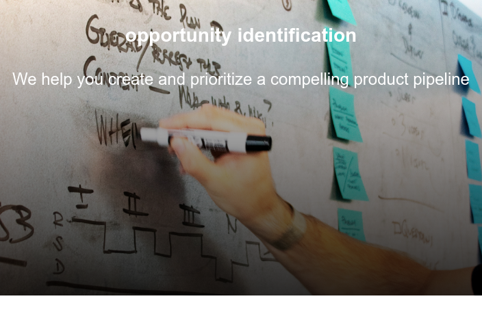 opportunity identification  We help you create and prioritize a compelling product pipeline