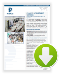 Process Development Services data sheet