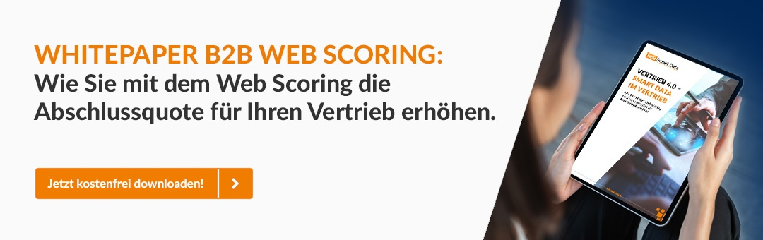 Whitepaper B2B Web Scoring