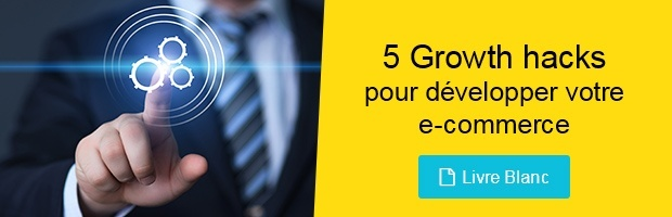livre blanc growth hacks