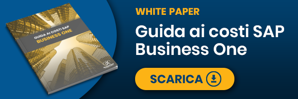 RunnerTech - White Paper - Guida ai costi di SAP Business One