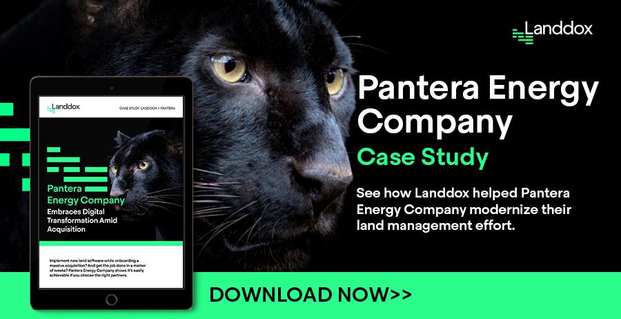 pantera case study