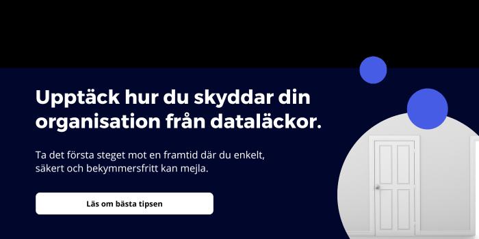 Skydda din organisation från dataläckor