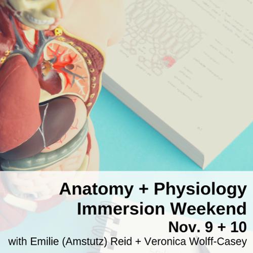 Anatomy + Physiology