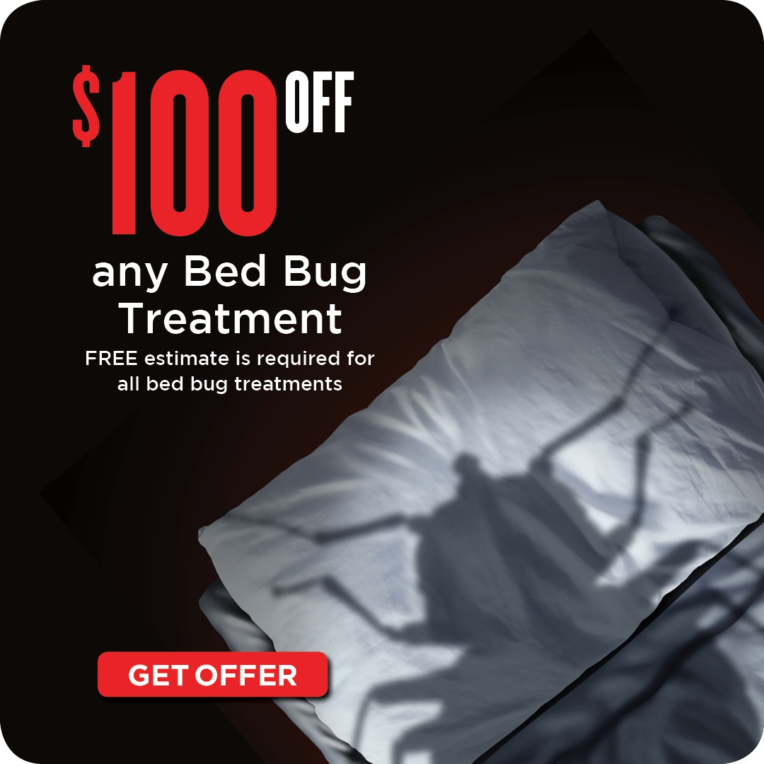 $100 Off Any Bed Bug Treatment