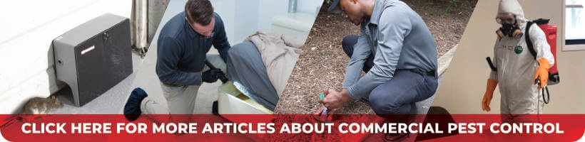 Click Here For More Articles About Commercial Pest Control