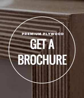Premium Plywood Brochure