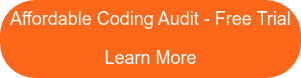 Affordable Coding Audits - We Can Help You Learn More