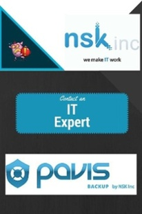 Pavis Disaster Recovery and Backup