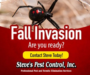 Steve's Pest Control Fall Invation