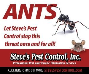 Ants threat