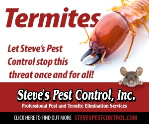 Steve's Pest Control Termites Control. Let Steve's Pest Control stop the threat of termites once and for all.