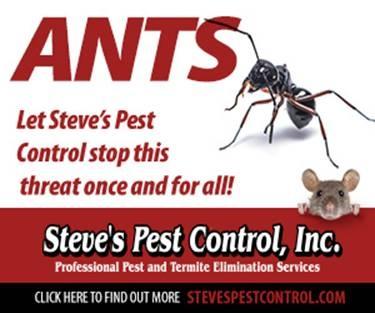 Steve's Pest Control Ants Ad