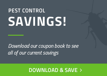 Houston Pest Control Coupons