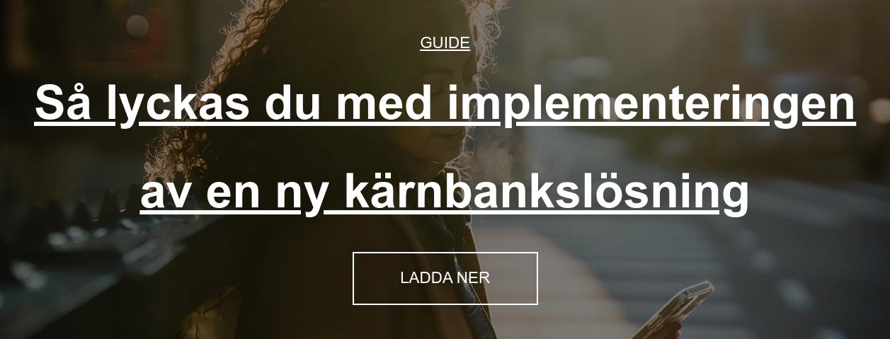 Guide  Så lyckas du med implementeringen av en ny kärnbankslösning Ladda ner guide
