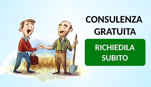 richiedi consulenza stato delle piante