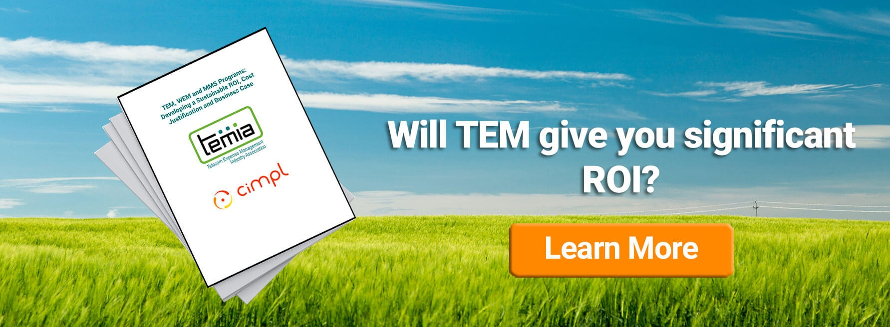 Will TEM Give You a Significant ROI?
