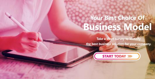 BizSol_Website_Questionnaire