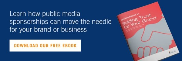 Download the Public Media Marketing 101 eBook