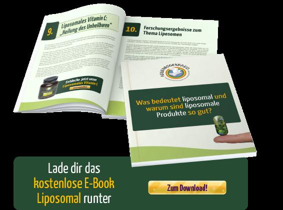 was-bedeutet-liposomal-und-warum-sind-liposomale-produkte-so-gut