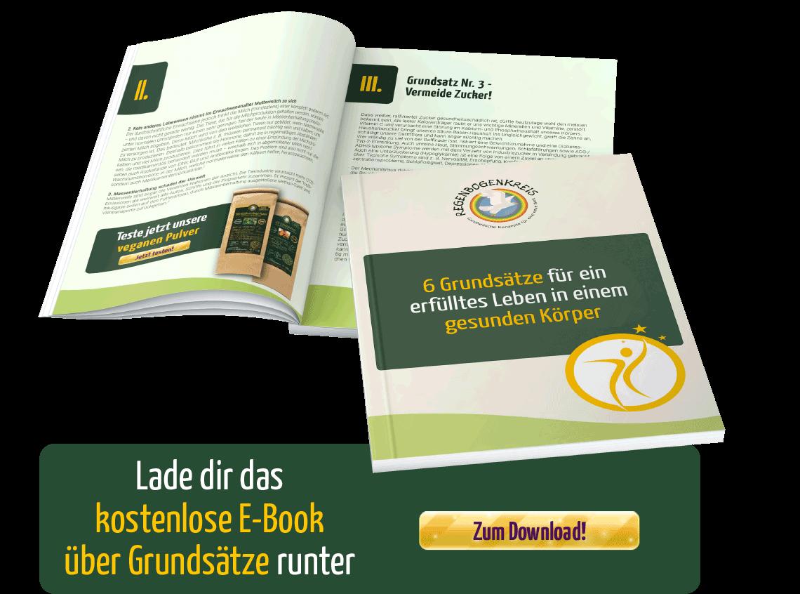 6-grundsaetze-fuer-ein-erfuelltes-leben-in-einem-gesunden-koeper