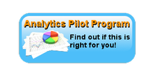 Small Business Analytics Pilot Program