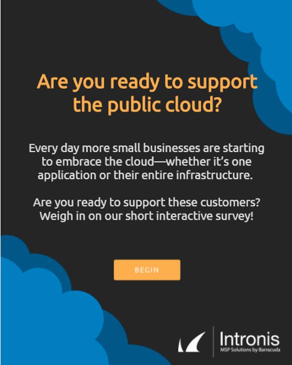 Public.cloud.survey