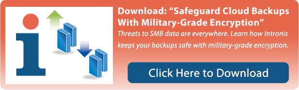 Safeguard Cloud Backups with military-grade encryption