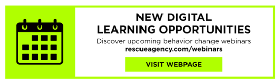 New-digital-learning-opportunities