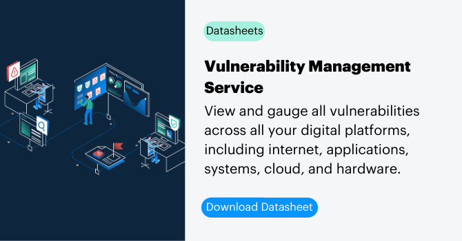 Vulnerability Management Service datasheet