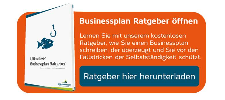 Businessplan Ratgeber herunterladen