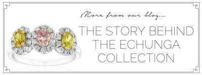 the story behind the echunga collection