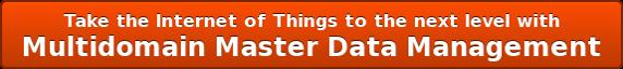Multidomain Master Data Management