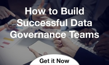 Build Data Governance Teams