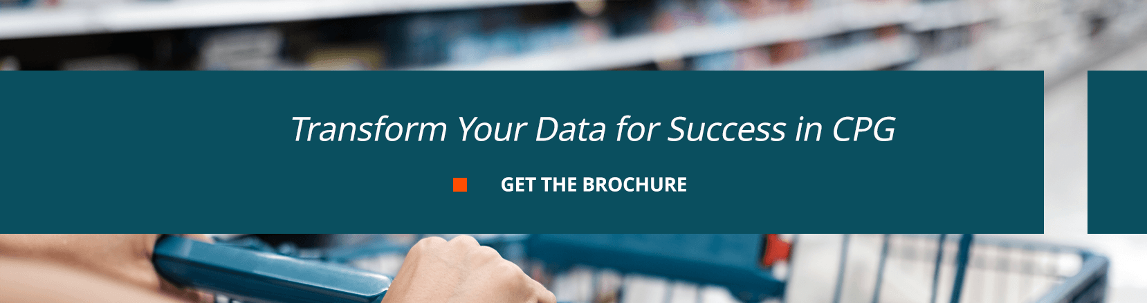 Transform Your Data for Success in CPG. Get the Brochure.