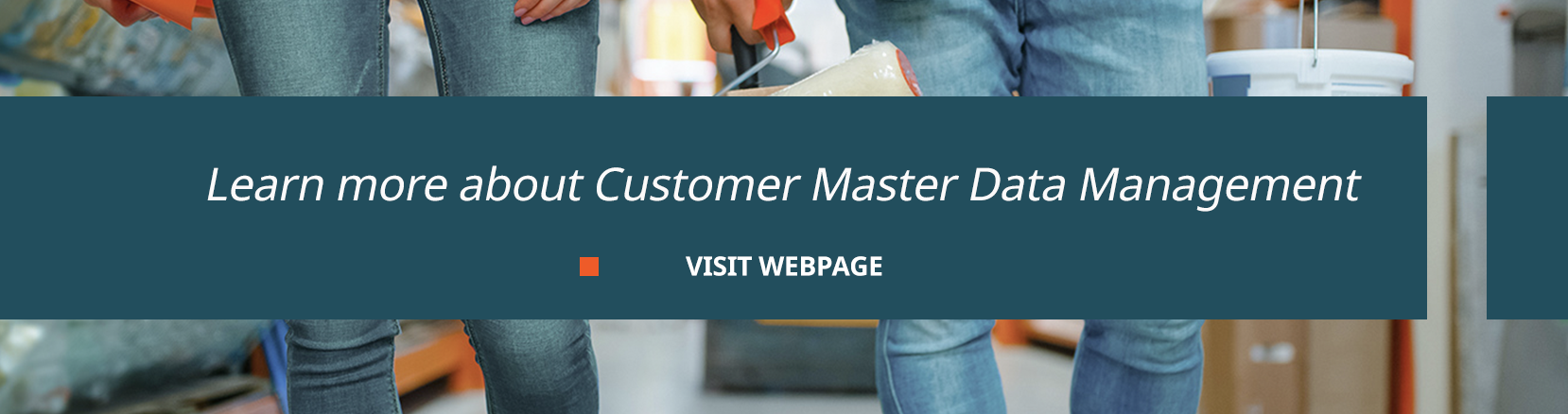 learn more about customer master data management