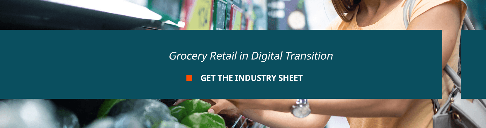 Grocery Retail in Digital Transition