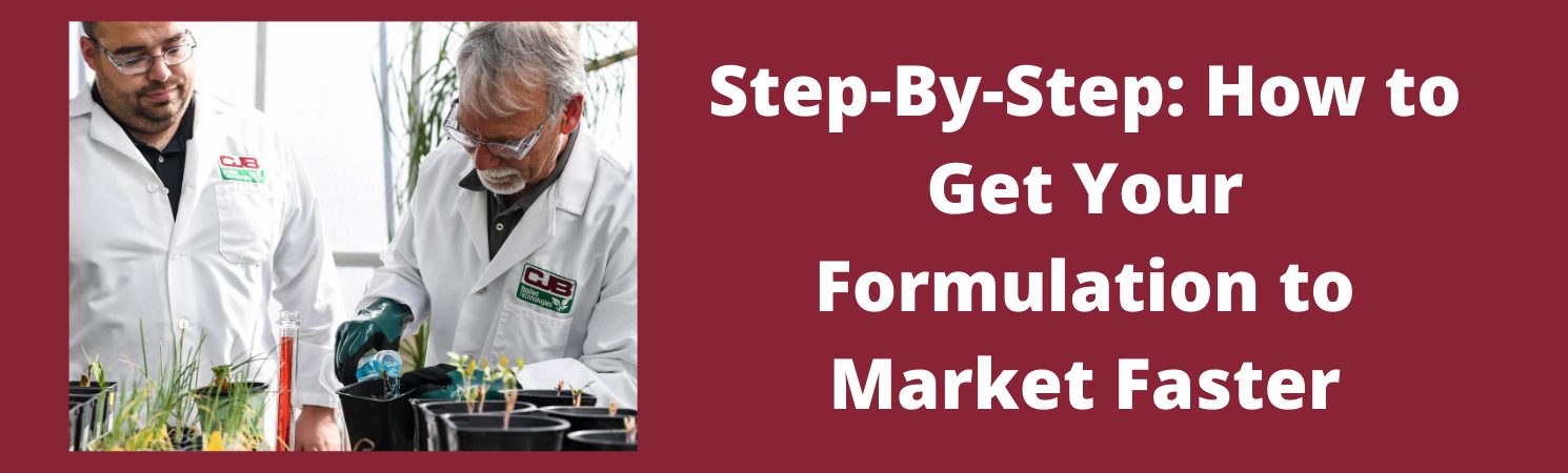 Step-By-Step: How to Get Your Formulation to Market Faster