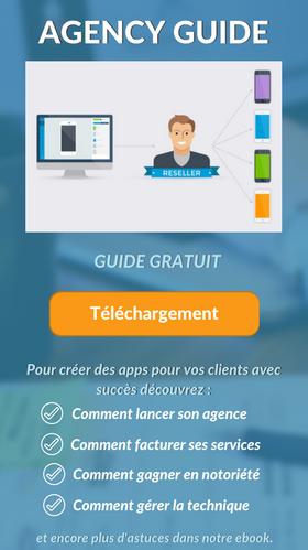 Agency Guide Ebook Gr